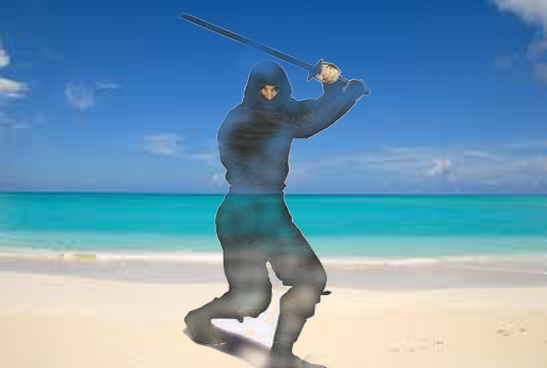 Image Result For Little Ninjas Full